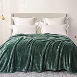 Exclusivo Mezcla Plush Fuzzy Fleece Twin Size Bed Blanket as Coverlet/Bed Cover/Bedspread/Bed Sheet( Celadon Green, 90x 66 inch)- Lightweight, Soft, Cozy and Warm