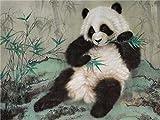Pintura de diamante punto de cruz animal panda chino 5D DIY mosaico regalo rhinestone decoración del hogar pintura A1 30x40cm