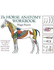 Raynor, M: Horse Anatomy Workbook (Allen Student)