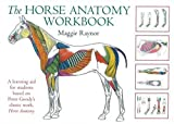The Horse Anatomy Workbook: A Learning Aid for Students Based on Peter Goody's Classic Work, Horse Anatomy (Allen Student) - Maggie Raynor