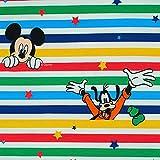 Jersey Stoff Disney Micky Maus/Mickey Mouse, Donald, Goofy,