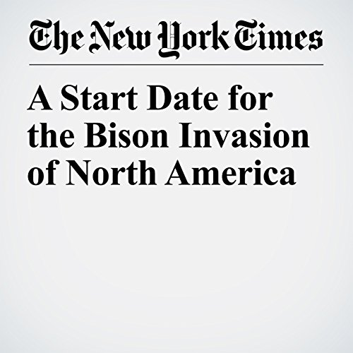 A Start Date for the Bison Invasion of North America copertina