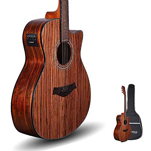 Kadence Acoustica A05 semi acoustic guitar Zebra Wood with Bag