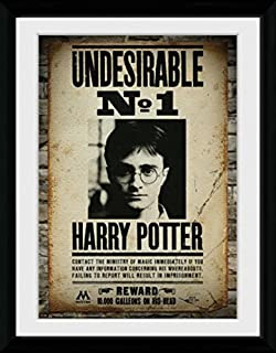 Harry Potter Framed Collector Poster - Undesirable No 1, Daniel Radcliffe (16 x 12 inches)