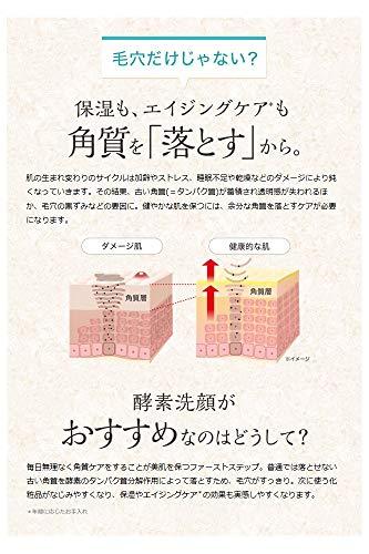 ESSパパウォッシュ(ベーシックタイプ約2ヶ月分)パパイン酵素洗顔パウダー
