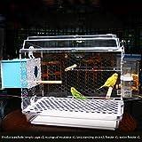 Ultraligero y rápida velocidad baja del cuadro de Sin complicaciones alimentador del pájaro - alimentador del loro por pequeñas a medianas aves, tablero de acrílico durable de 360 grados sin Muerto