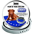 GORAUL Flea and Tick Collar for Dogs - 8 Months Continuous Flea Prevention Collar for Dogs - One Size Fits All - Easily Adjustable and Waterproof Design - Advanced Natural Flea and Tick Control Collar