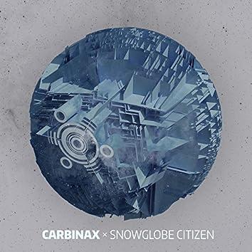 Snowglobe Citizen