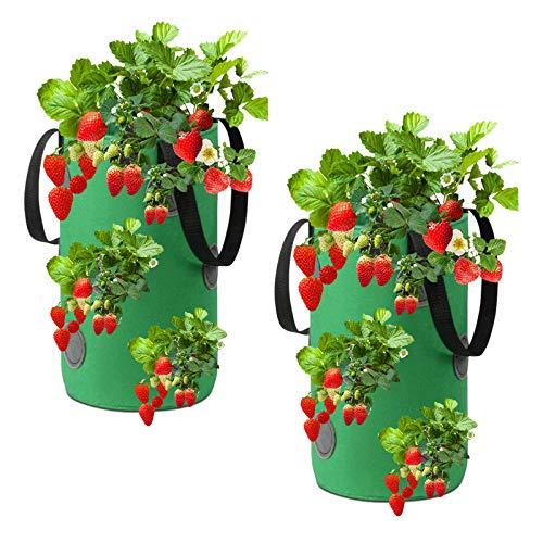 Erdbeere Pflanzsack, 2 STK Hängender Vliesstoff Gardens Strawberry Planting Growing Bag mit 13 Löchern, Strawberry Plant Grow Bags für Gartenerdbeeren, Kräuter, Blumen (20x35cm)