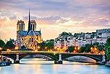 YsKYCp Puzzle 1000 Piezas,Notre Dame of Paris Range para Niños Regalo para Adultos Paisaje Carácter Animal Decoración del Hogar 3D Coleccionables Brain Puzzle Games