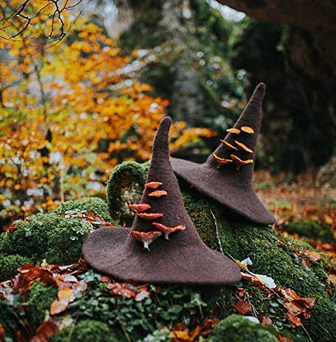 Witch hat with mushrooms amanita muscaria forest wizard felted wool