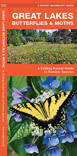 Great Lakes Butterflies & Moths: A Folding Pocket Guide to Familiar Species (A Pocket Naturalist Guide)