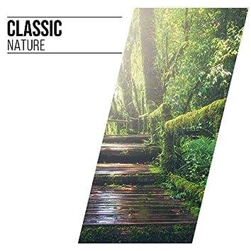 Classic Nature, Vol. 12