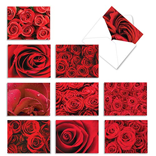 The Best Card Company - 10 Flower All Occasion Blank Cards (4 x 5.12 Inch) - Boxed Cards with Envelopes - Roses Are Red M3088