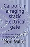 Carport in a raging static electrical gale: Epilepsy and Silent Seizures RP