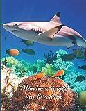 Mon livre imagé sur le requin: Mon premier imagier pour les enfants sur les animaux de la mer avec des photos en couleur et des textes pour tout ... sur les animaux marins) (French Edition)