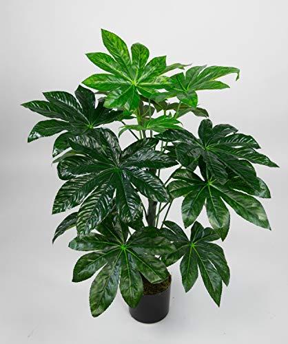 Seidenblumen Roß Aralie Real Touch 100cm grün im Topf ZJ Kunstpflanzen künstliche Pflanzen Aralienpflanze