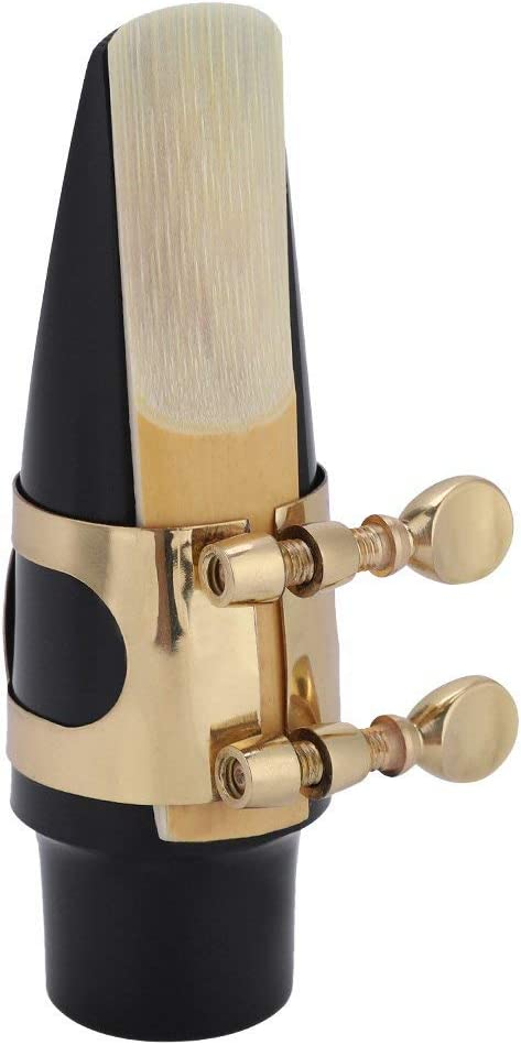 Dilwe Popular product Sax Mouthpiece kit Tenor wit half ABS Saxophone