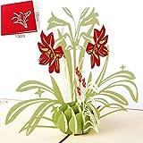 BC Worldwide Ltd handgemachte 3D-Pop-up-Karte rote Lilie Lilien Blume Geburtstagsgruß, Hochzeitstag, Valentinstag, Muttertag, Einweihungsparty, danke Geschenk