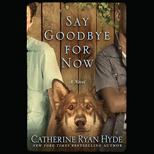 Say Goodbye for Now cover art