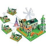 BIUYYY DIY Modell des grünen Energieparadieses Physikalische Wissenschaft Experiment Spielzeug Kinder Physik Lernen Wissenschaft Pädagogische Kit Montieren Modell