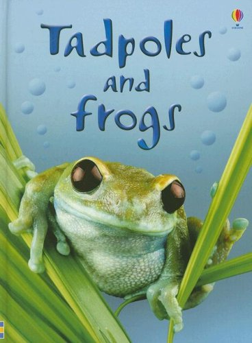 Top tadpoles and frogs usborne for 2020