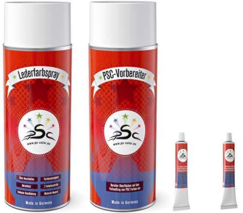 Set 4-400: Lederfarbe Anthrazitgrau RAL 7016 & Leder-Reiniger 400ml Spray & Flüssigleder & Lederspachtel 8gr Tube zum färben und Restaurieren von Ledersitzen, Lederschuhen & Anderen Lederartikeln