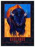 Badlands National Park Lone Bison Giclee Art Print Poster from Oil Painting by Artist Kari Lehr 9' x 12'