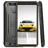 Blackview BV5500 Pro Outdoor Smartphone ohne Vertrag, 4G Handy Android 9.0 mit IP68 Wasserdicht, 3GB RAM + 16GB Speicher, 4400mAh Akku, 5.5 Zoll Bildschirm Handy (NFC/Face ID) Gelb