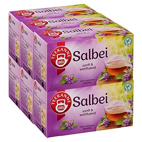 Teekanne Salbei 6er Pack