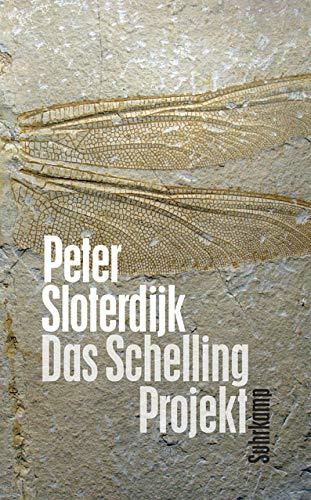 Das Schelling-Projekt: Bericht (suhrkamp taschenbuch)