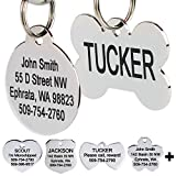 GoTags Stainless Steel Pet ID Tags, Personalized Dog Tags...
