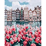 Kits de pintura de bricolaje por números, cuadro al óleo de la casa del río y la flor roja por número, decoración moderna del hogar, arte de pared, manualidades A1 45x60cm