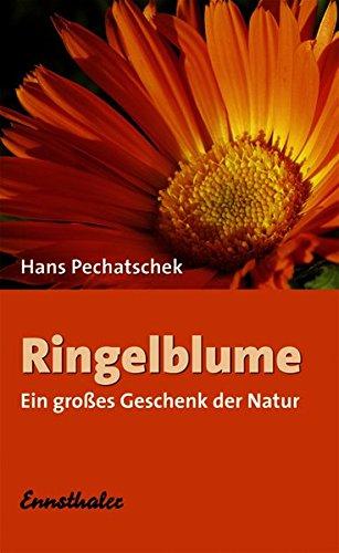 Ringelblume: Ein grosses Geschenk der Natur