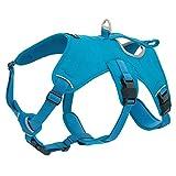 Best Pet Supplies Voyager Hundegeschirr, verstellbar, mit 3M-Reflektor-Technologie, Medium, Turquoise (Control)
