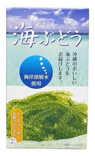 海洋深層水使用 沖縄県産 海ぶどう(60g)×1箱 サングリーンフレッシュ