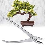 Cortador de perilla cortador de perilla de acero inoxidable de 210 mm Bonsai Herramienta de calidad maestra de jardiner/ía c/óncava de cortador de ramas y cepillo de bamb/ú y juego de cizalla para /árbol