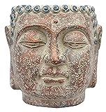 WQQLQX Statue Skulptur Dekoration Statue Buddha Kopf Blumentopf Outdoor Garten Buddha Büste Statuette Sukkulenten Blumentopf Handkasse Dekoration 20 * 22 cm Skulpturen