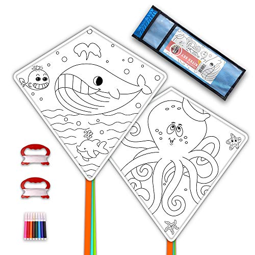 Mint's Colorful Life Drachen Kinder DIY basteln Kite Making Kits, 2 Pack Einleiner Drache Bastelset