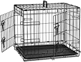 AmazonBasics Double-Door Folding Metal Dog or Pet Crate Kennel with Tray, 24 x 18 x 20 Inches