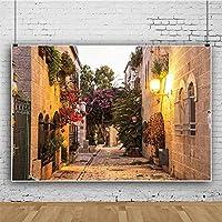 lovedomi 5x3ft 現代都市文化建築エキゾチックな町の路地の花写真背景写真スタジオブースの背景家族休暇誕生日パーティースタジオ小道具写真ビニール素材