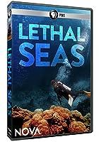 Nova: Lethal Seas [DVD] [Import]