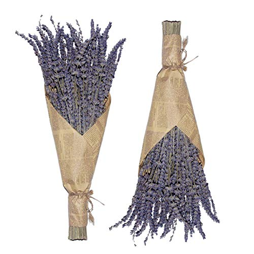 Cedar Space Lavender Dried Flowers 2 Bunches Dried Lavender Ideal Home Fragrance Products for Home Decorations, Wedding, Party, Photography & Flower Arrangements, Total Length 16 Inches…