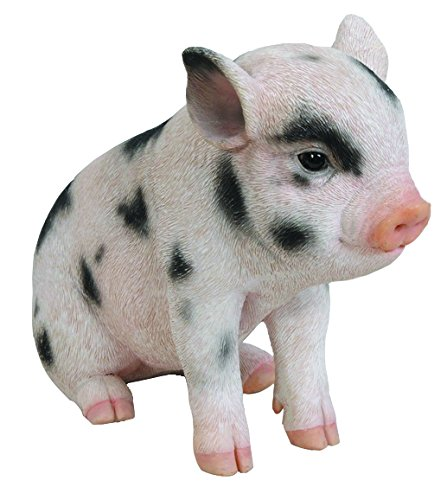 Hi-Line Gift Ltd Sitting Baby Pig with Black Spots  6