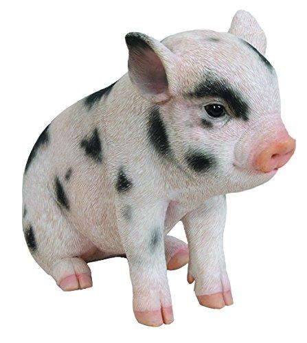Hi-Line Gift Ltd Sitting Baby Pig with Black Spots, 6'