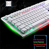 Wired USB Gaming Keyboard Backlight Gaming LED Rainbow Color Game Wired RGB Mechanical Keyboard (White)