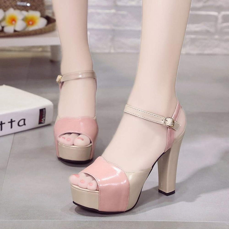 UKJSNHH igh Heels Hot Spring Women Pumps Chunky Heel High Heel Open Toe PU Wedding Platform Office Ladies Sandal shoes 11CM