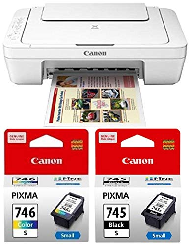 Canon MG3077S All-in-One Inkjet Colour Printer with PG745S & CL746S Ink Cartridge