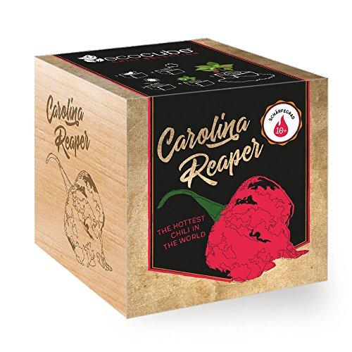 Ecocube Carolina Reaper