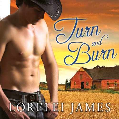 Couverture de Turn and Burn